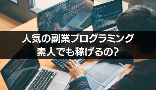 副業プログラミング言語はHTMLとCSSが人気!でもプログラムじゃないよ?